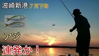 【波崎新港7月下旬】時合いが短い中でアジが連発か?