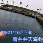 2021年6月 新井弁天公園海釣り
