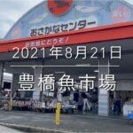 【天竜魚】通常価格の倍⁉︎『豊橋魚市場』にとんでもない高級魚..現る