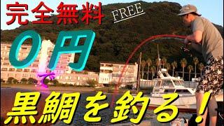 お気楽!堤防、漁港で黒鯛釣り!!