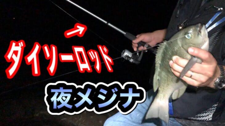 1000円のダイソータックルで夜の磯でメジナ釣りに挑戦してみた!!