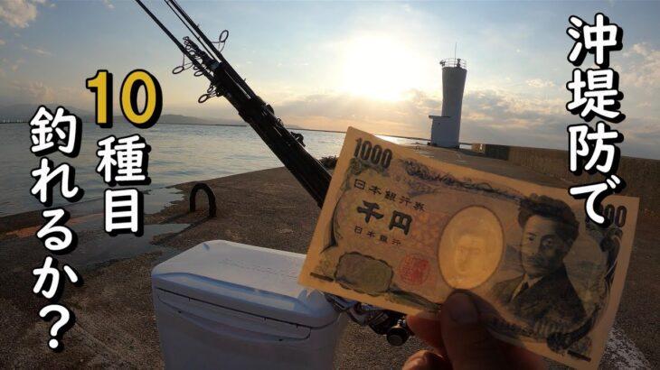 【10種目釣り】1000円で1日遊べる沖堤防で10種目を狙う。