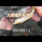 九頭竜川鮎釣り 2021/09/12