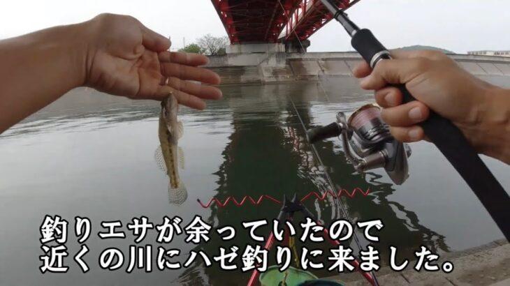 【釣り散歩】近くの川でちょっとハゼ釣り、ついでにカニも釣れた:2021年9月