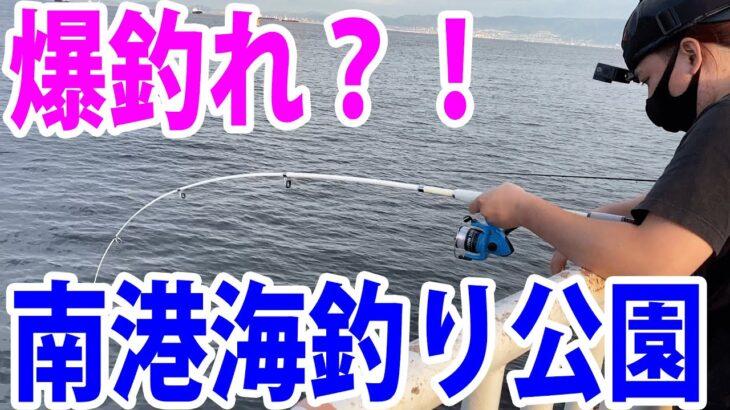 【南港でサビキ釣り!!】大阪は南港海釣り公園にサビキ釣行!!※9月5日時点