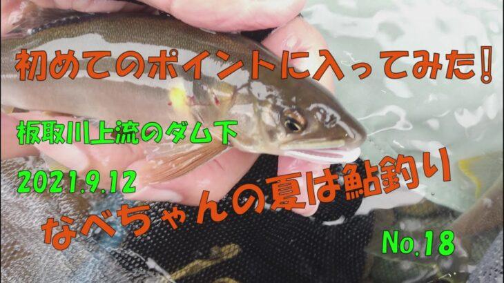 【鮎釣り】なべちゃんの夏は鮎釣り No.19 初めてのポイントに入ってみた!2021.9 .12 板取川上流ダム下