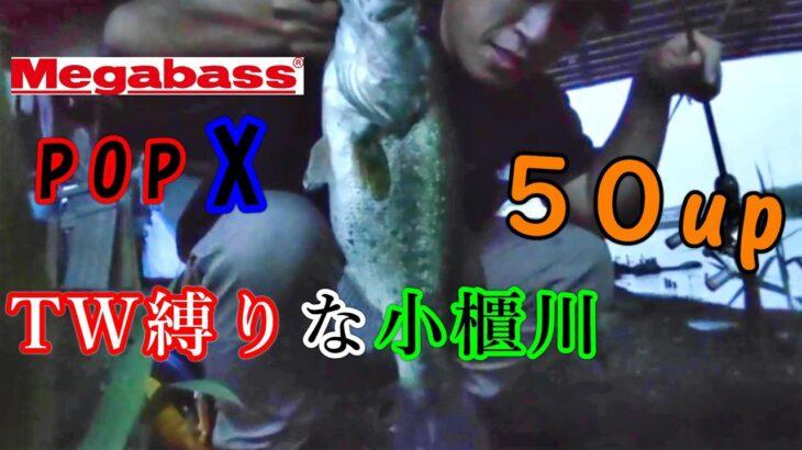 【小櫃川】秋はTW!色褪せぬ名作『POPX』はデカバスハンター!