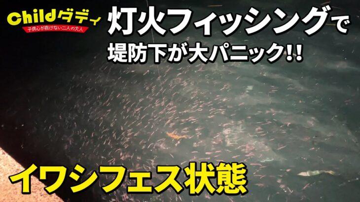 【灯火フィッシング】目の前魚だらけ!!堤防から照明照らしたら大変な事になった!【夜釣り】