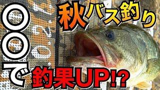【秋バス釣り】〇〇がヤバい‼︎短時間で秋バスを釣る方法オススメルアーすべて公開!!【佐賀バス釣り】