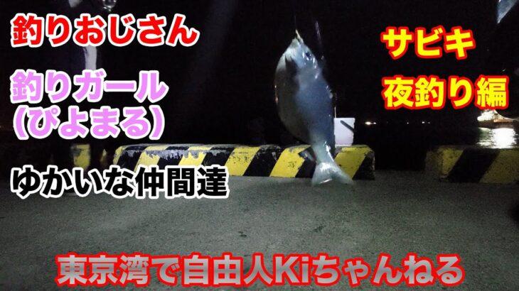 【夜釣り編】堤防でサビキ釣り(鯵、鯖、グレ)