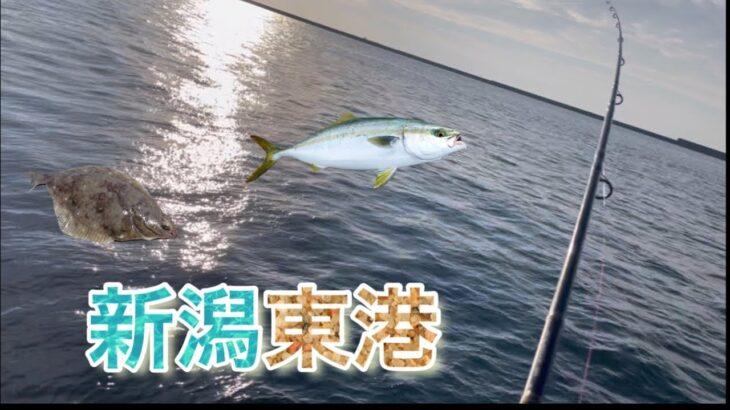 新潟の有名堤防は何が釣れる?
