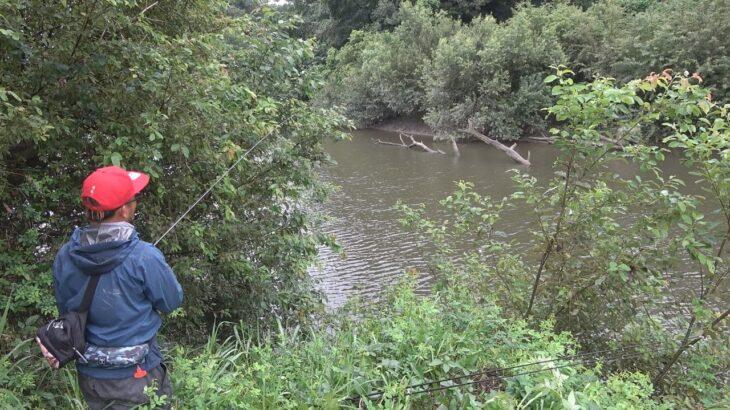 台風で倒れた木に新作ルアーを投げると釣れる?釣れない?