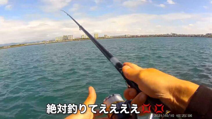 【浜名湖】新居海釣り公園  フカセ 釣り 2