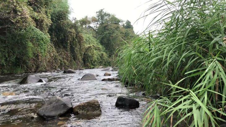 那珂川水系 渓流相の小河川で鮎釣り 2021年10月