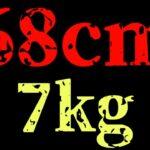 【事件】奥琵琶湖で68cm、7kgのブラックバス【おかっぱり】