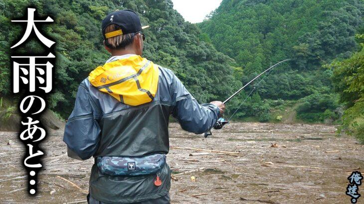 水が見えないほど埋め尽くされた流木の下から魚を引っこ抜くワザ。