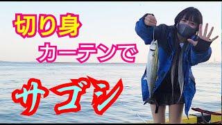 【初心者釣り】須崎埠頭でカマスを狙ってみたけどサゴシが好調【釣り女子・カップル釣り】