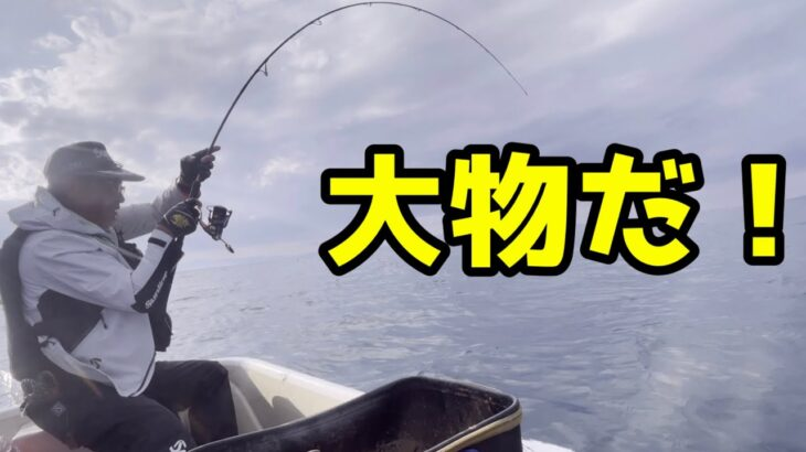 磯釣りに行って釣れないので、ボート釣りをしたら大物ヒット!