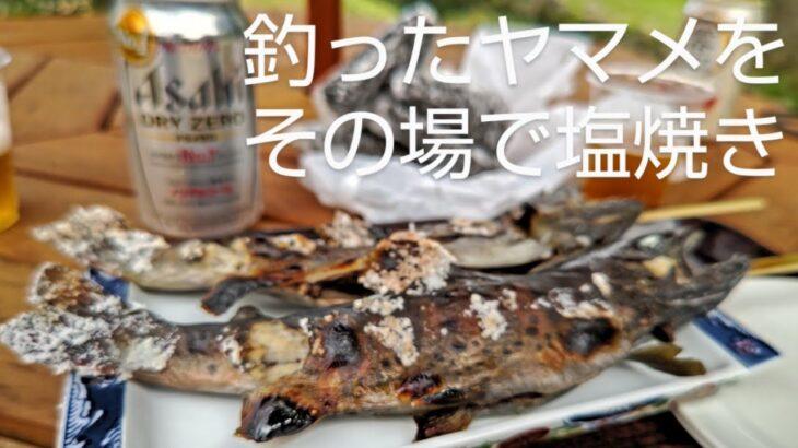 「渓流釣り」「ヤマメ」「釣り堀」釣った川魚をその場で焼いて食べる動画#渓流釣り #ヤマメ #釣り堀
