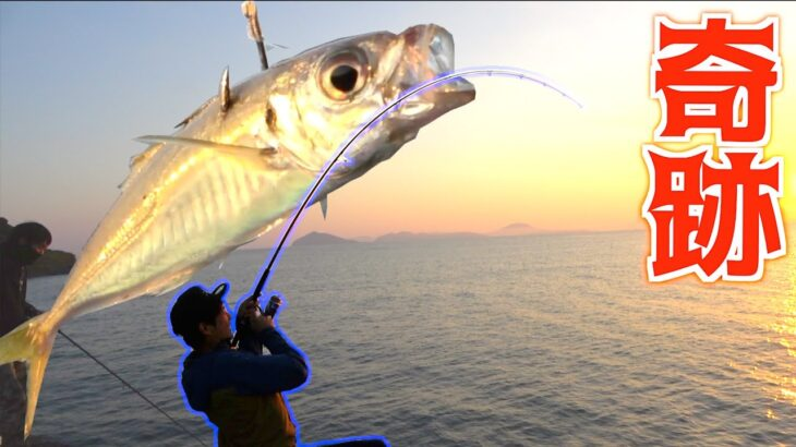 生きたアジを泳がせたら超高級魚が釣れた!!