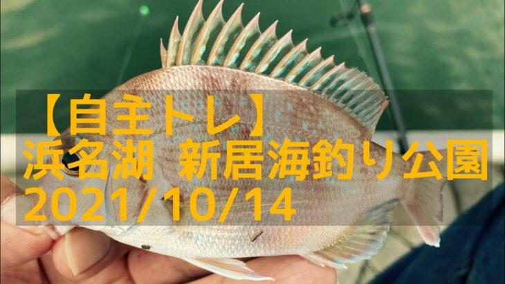 【自主トレ】浜名湖 新居海釣り公園